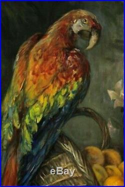 Alfred Ribard, Début XXe S, Grand Sujet Animalier, Aras, Perroquet et Oranges