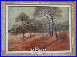 Leon DETROY 1857/1955 Ecole de Crozant Huile/Toile pins Dans le Midi 1910/1920