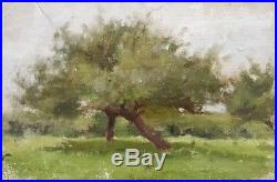 Peinture huile Jules-Cyrille Cavé paysage nature arbres jardin XIXème XXème